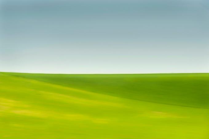 Andalucia-paintedfield