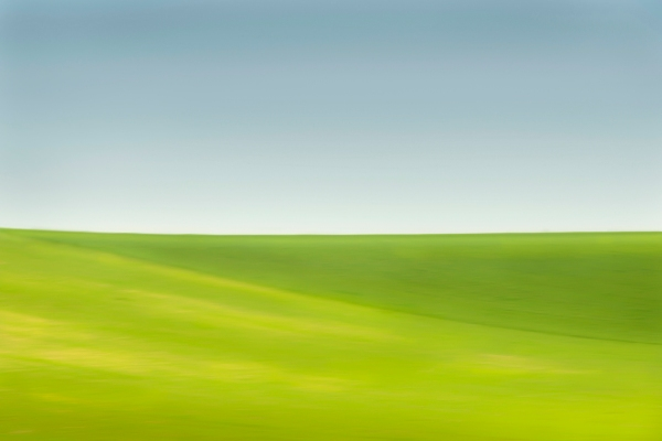 B-Andalucia-paintedfield