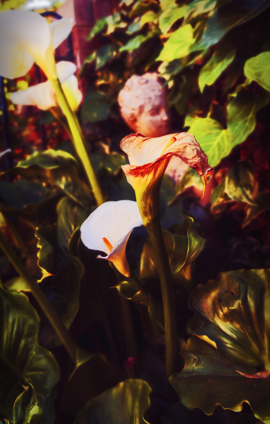 GardenStatueandLilies
